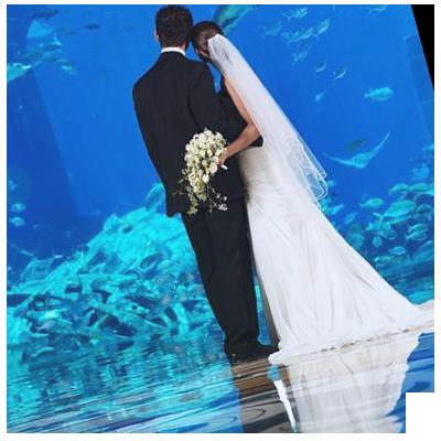 Your Choice Dubai Wedding Planner Fabulous Day